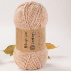 Melange Wool (80% полиамид 20% шерсть) (100гр. 170м.)*5 мотков